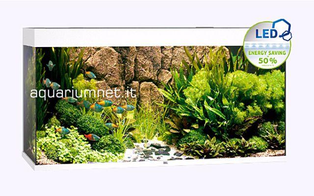 Acquario-juwel-Rio-240--LED